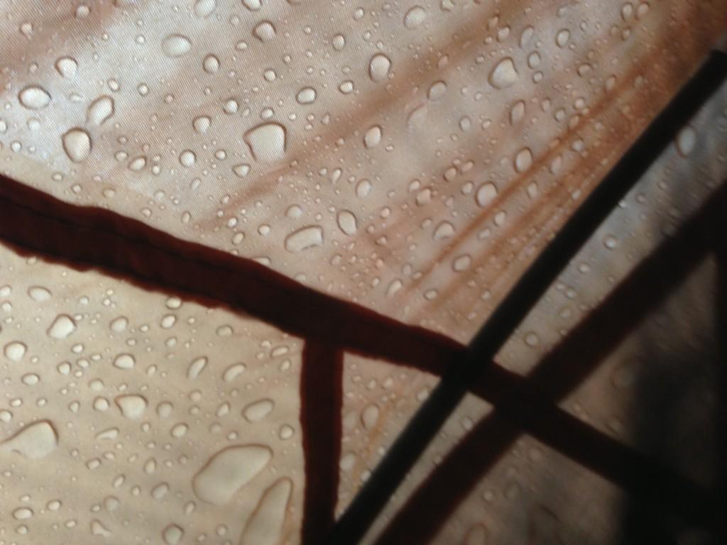 帐篷上的雨珠